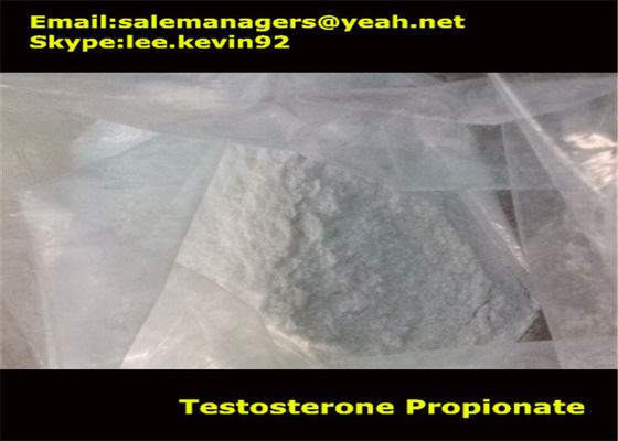 Cas 57-85-2 Muscle Growth Steroids Testosterone Propionate Powder / Thử nghiệm Propionate